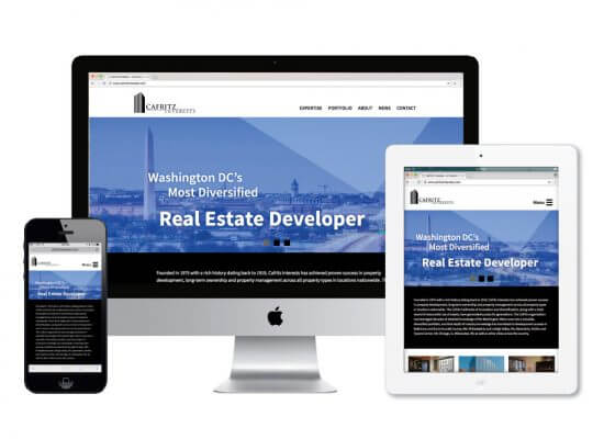 Carfritz Investments website